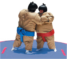 Sumo Wrestling Suits picture